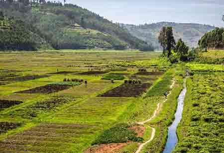 How to Modernize Land Administration with Esri?